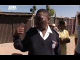 Отдел по защите животных, Южная Африка 2008-07-25 - Нелицензированный ветеринар